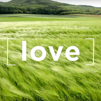 """Thomas Merton quote on love: """"Love is our true destiny."""""""