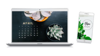 Download these free Spring wallpapers brought to you by Grotto Network.